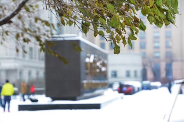 【视觉志】好雪片片不落别处——哈工大雪景图