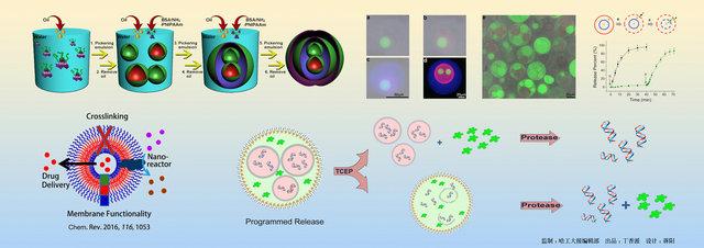 细胞因子分子结构图ppt背景图片